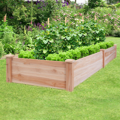 Cedar Raised Garden Bed - 8'x2'x1'