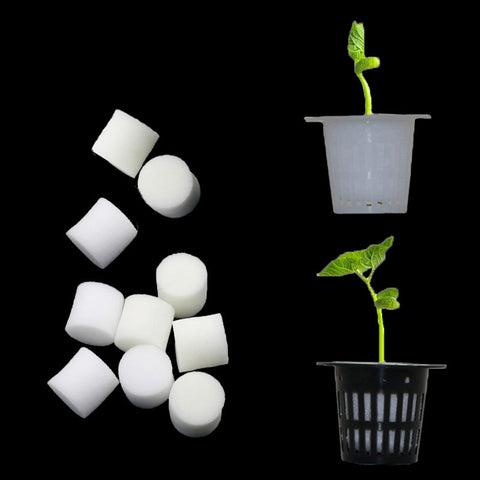 Soil-less Hydroponic Seed Sponges and Cups