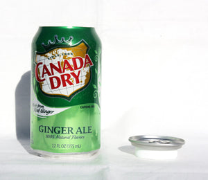 Canada Dry Concealment Soda Can Diversion Safe Stash Can - Concealment Cans