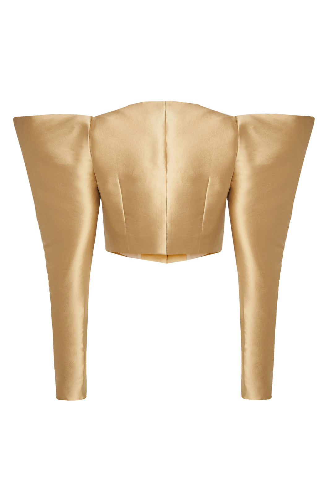Puff Sleeves Gold Jacket