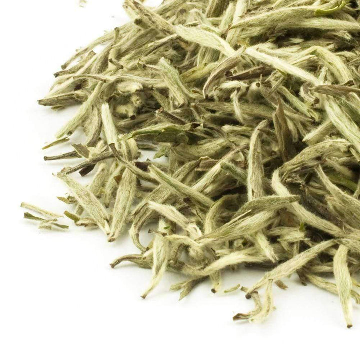 Gushan Silver Needles White Tea - The Soho Tea Company