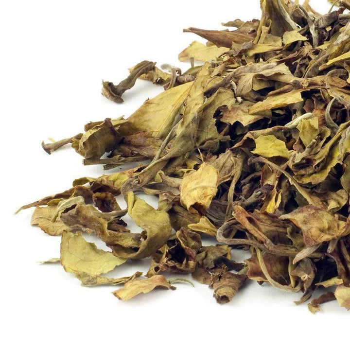 Kenya Tinderet White Tea - The Soho Tea Company