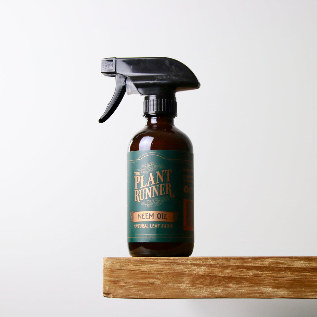 The Plant Runner Leaf Shine Spray