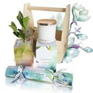 In Bloom Candle Gift Set