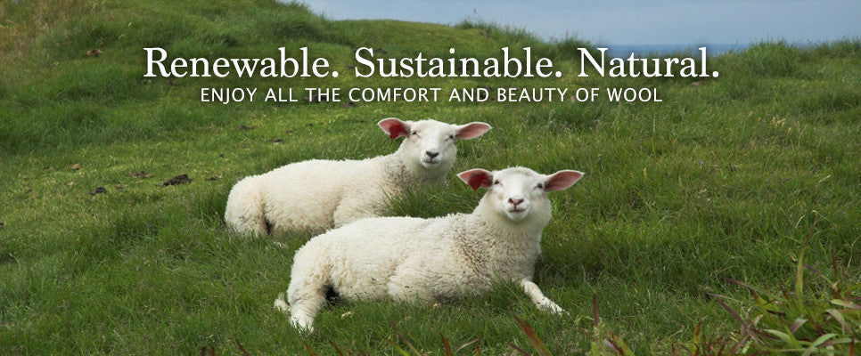 Learn about wool