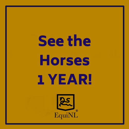 Access for 1 YEAR to the Horses which are for sale now!
