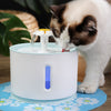 Pawz Comfort Pet Water Fountain - Why Choose This Product?