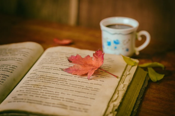 A photo of an open book with a leaf on top and a cup of coffee on the table