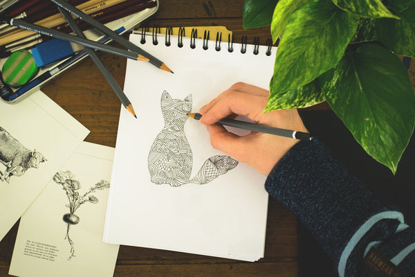 A cat drawn with pencil