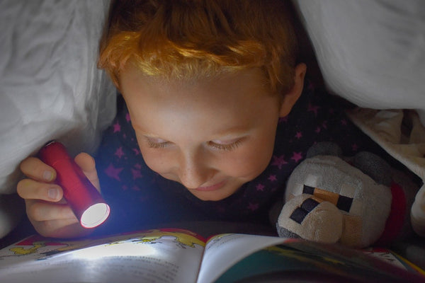 A boy reading with a flashlight under his canopy nook