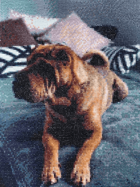 Paint with diamonds of a dog