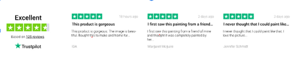 Trustpilot Reviews for Best Paint by Numbers