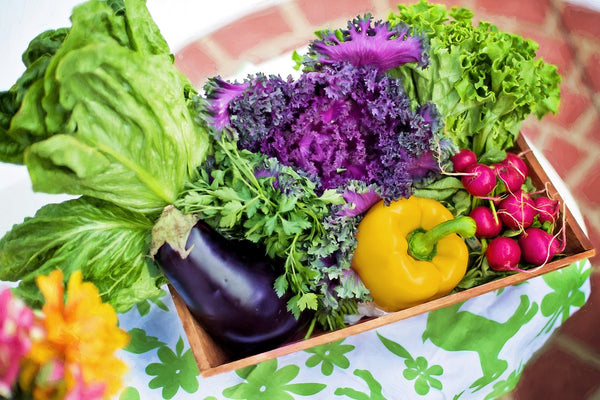 A basket of vegetables from a garden
