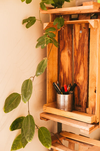 A wooden crate being used to hold some plants