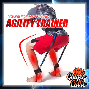 PowerQuad Elastic Bands Agility Trainer