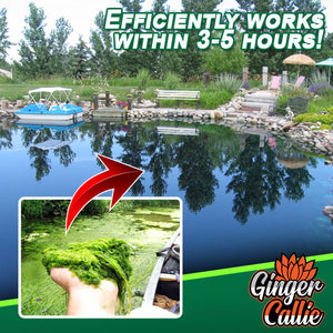 Pond Cleaner Algae Agent