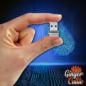 Mini USB Fingerprint Reader