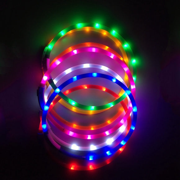 USB Rechargeable Luminous Lighted Flashing Dog Collars - Cut to Size