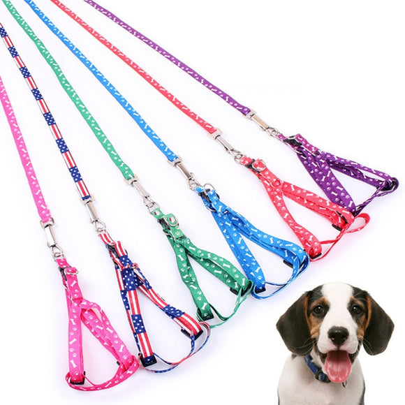 Durable Colorful Patterned Polyester Dog Walking Harness & Leash