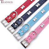 Adjustable Dog Collar with Bone Decor