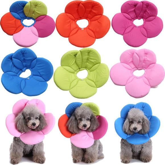 Adjustable Colorful Soft Padded Cone E-Collar for Wound Healing & Stop Licking