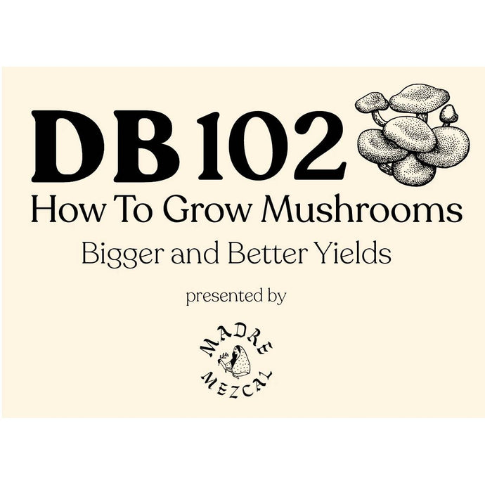 DB 102: How to Grow Mushrooms (Intermediate)