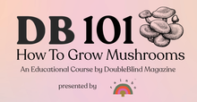 Load image into Gallery viewer, DB 101: How to Grow Mushrooms