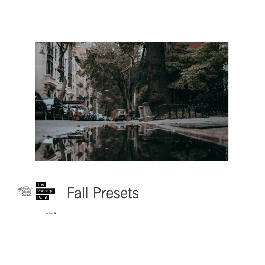 The Vantage Point Fall Presets