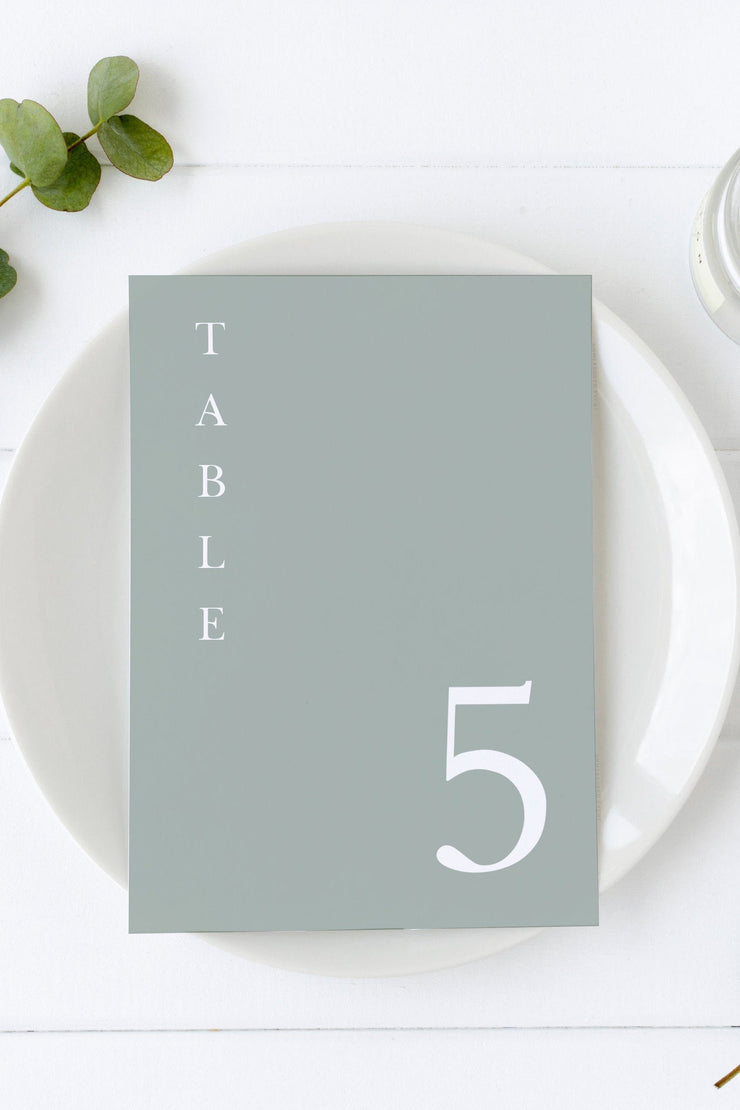 NINA | Minimalist Sage Green Bohemian Printable Wedding Table Number Template