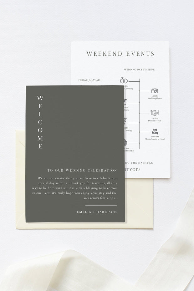 NINA | Minimalist Sage Green Bohemian Printable Wedding Welcome Letter & Timeline Template