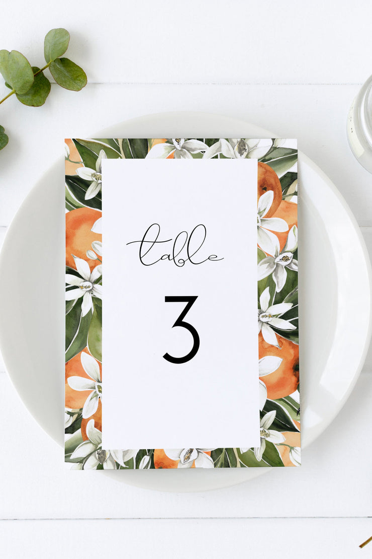 CALLIOPE | Watercolor Orange Blossom Printable Table Number Template