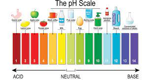 Rainbow colored illustration of the pH scale with examples