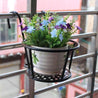 Hanging Window Basket