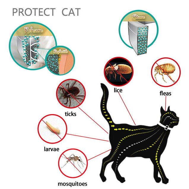 Flea and tick protection in home.