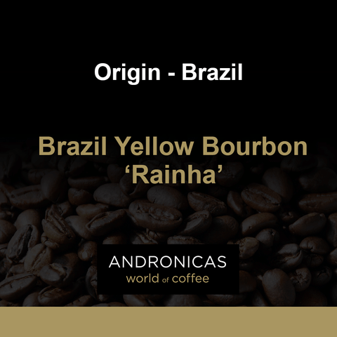 Brazil Yellow Bourbon 'Rainha'