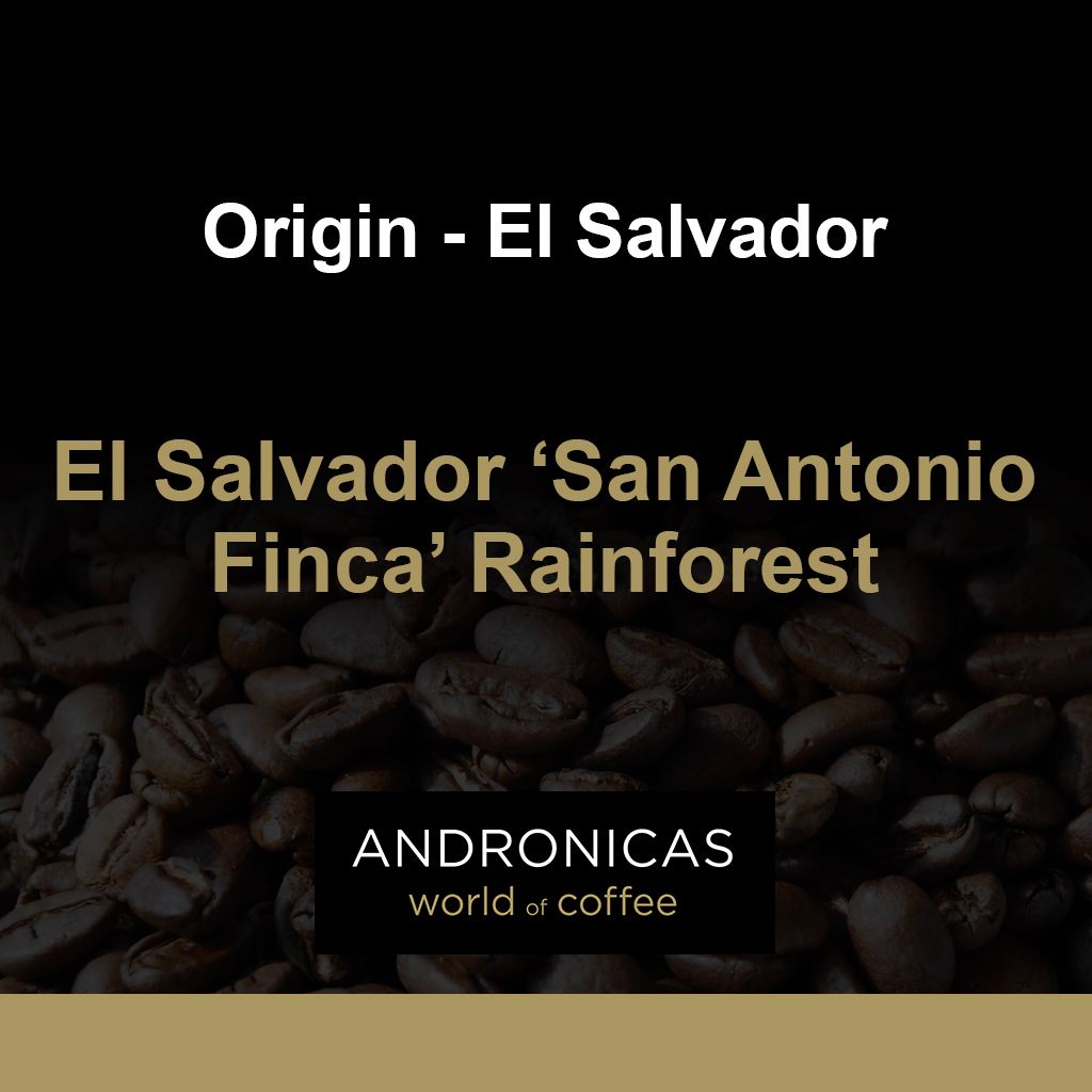 El Salvador 'San Antonio Finca' Rainforest
