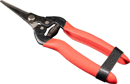 Arius Garden Carbon Steel Straight Pruning Shears 840-3