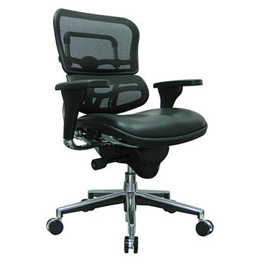 Ergohuman Leather Seat Mesh Back Management