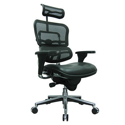 Ergohuman Leather Seat Mesh Back Executive