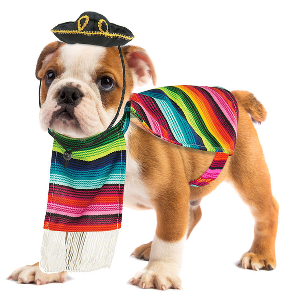 Skeleteen Mexican Serape Dog Costume - Cinco de Mayo Poncho and Sombrero Costumes for Pets (Size XL)