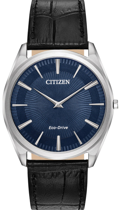 Citizen Eco-Drive Watch:AR3070-04L