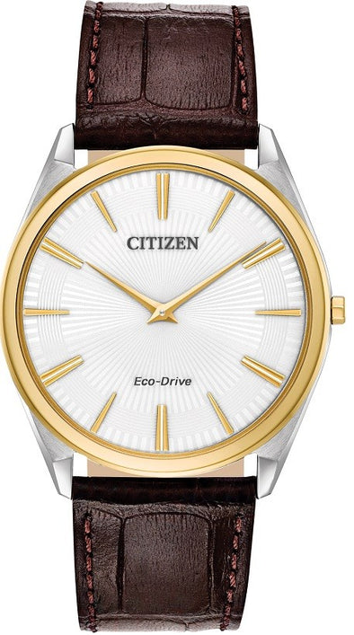 Citizen Eco-Drive Watch:AR3074-03A