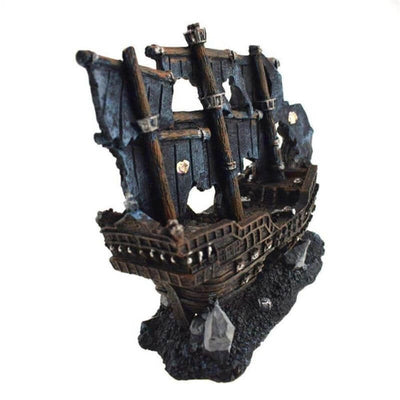 epave-bateau-pirate-aquarium-arriere