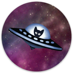 Spaceship Kitten Magnet