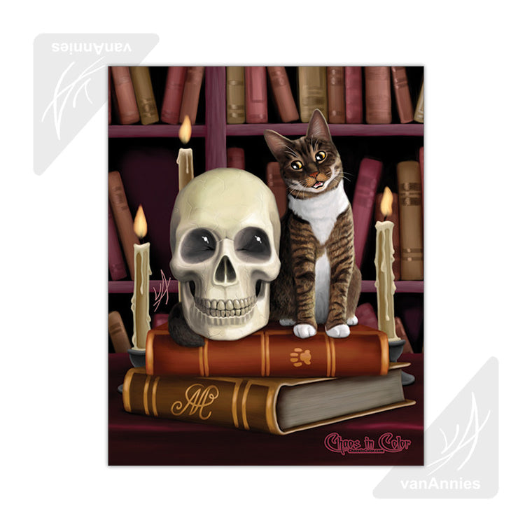 Amazing Stories (Cat and Skull in Library) 11x14 Poster