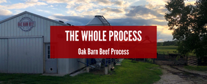 The Whole Process of Oak Barn Beef