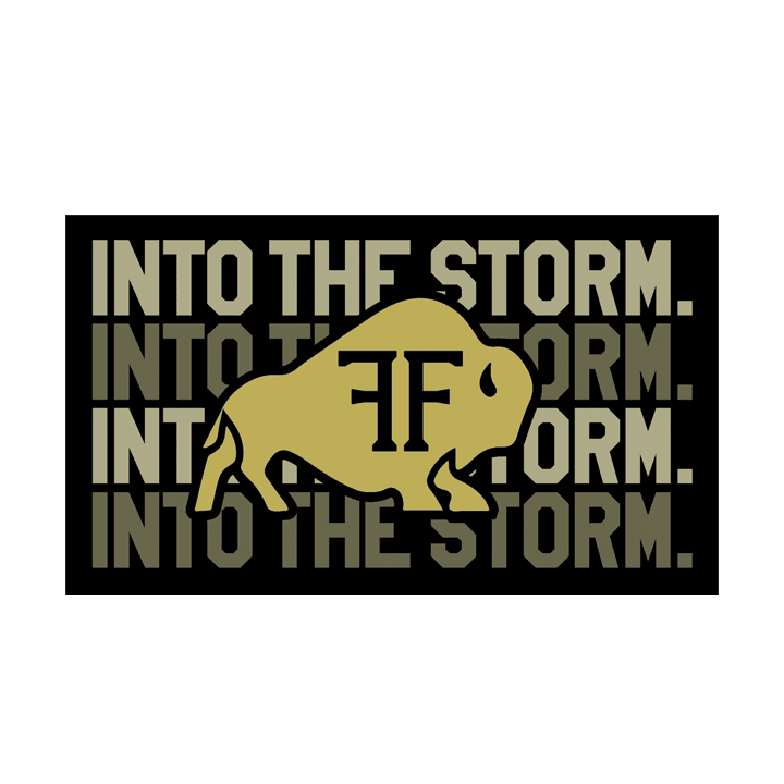 Bison Into The Storm 1.0 Sticker