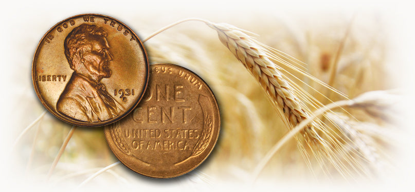 Buy Lincoln Wheat Cents | Mount Vernon Coin