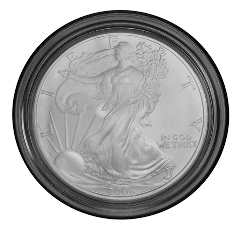 2006-W Burnished Silver Eagle