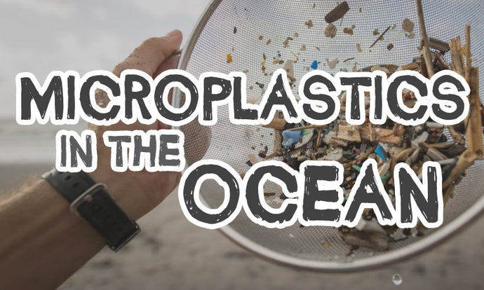 Microplastics in the ocean: A macro problem